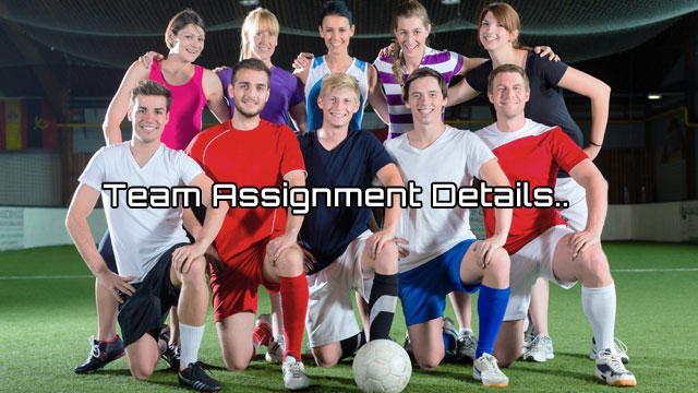 Team Assignment Details CYSA